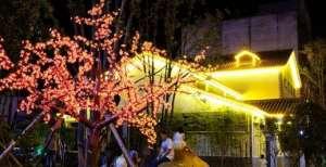 华灯初上 两千余盏景观灯扮亮汨罗城推台锯